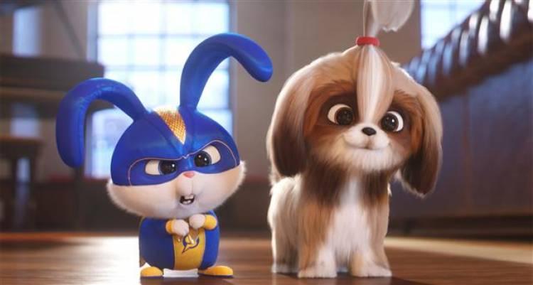 """The Secret Life of Pets 2"" - Synopsis & Stills"